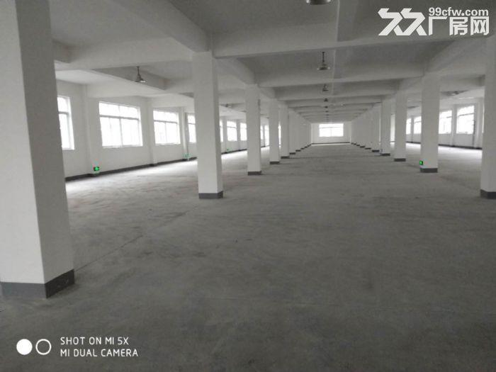 义桥新建的全新厂房,彩光好,价格便宜,可拎包入驻-图(3)