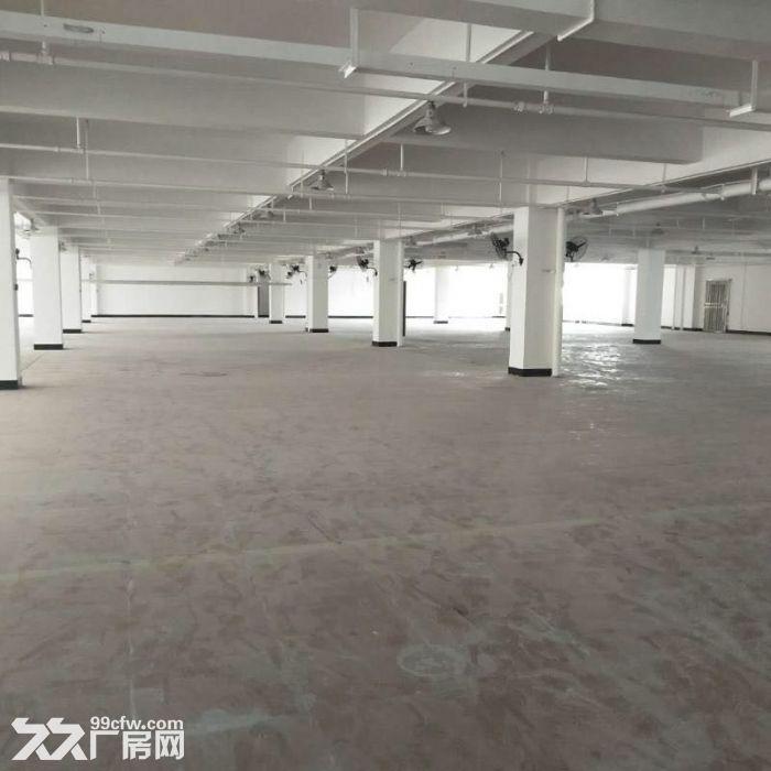 义桥新建的全新厂房,彩光好,价格便宜,可拎包入驻-图(6)