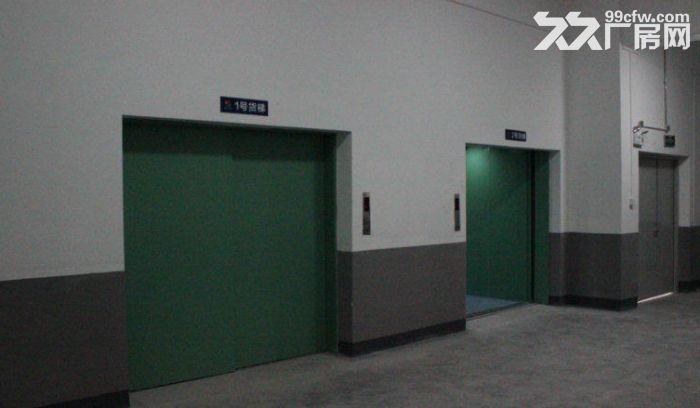 火炬区标准厂房楼上1000方厂房出租,可分租,布局方正-图(3)