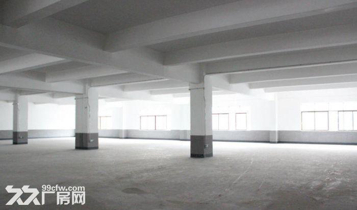 火炬区标准厂房楼上1000方厂房出租,可分租,布局方正-图(4)