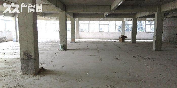 火炬区独院楼上1200方厂房出租、有货梯,可分租-图(3)