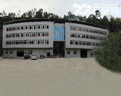 火炬区独院楼上1200方厂房出租、有货梯,可分租-图(4)