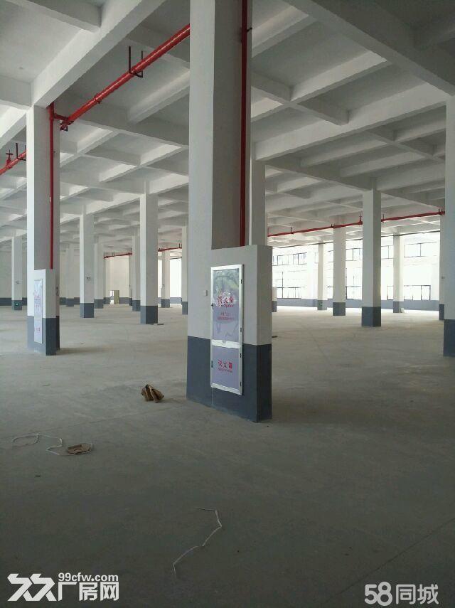 湖里园1−5共13500平厂房出租可分租-图(1)