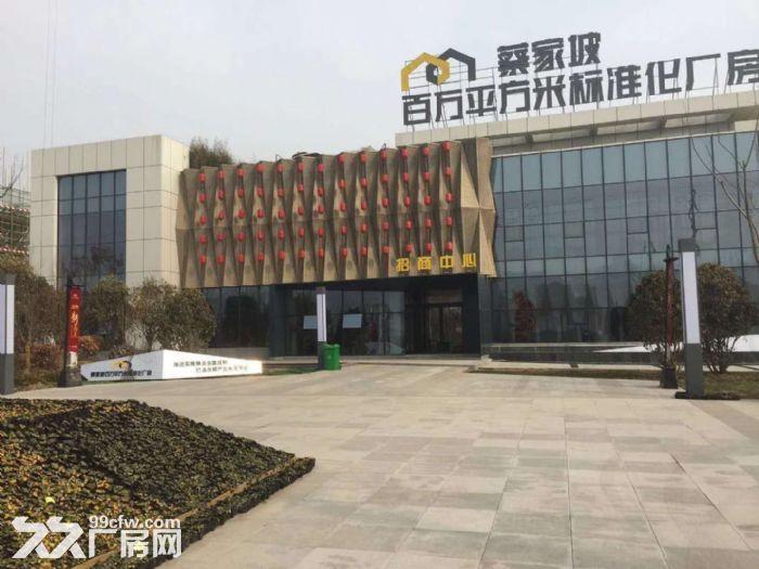 蔡家坡百万平米标准化厂房仓储物流区可租可售50年产权-图(6)