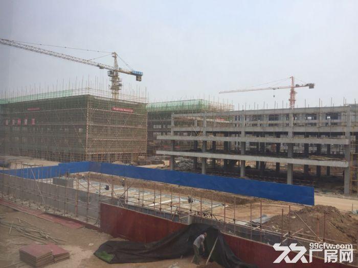 蔡家坡百万平米标准化厂房仓储物流区可租可售50年产权-图(7)