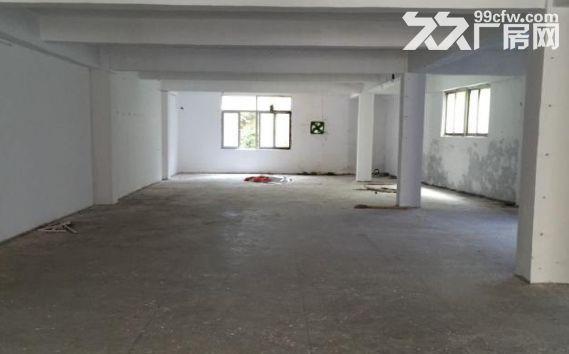 枋湖工业小区厂房出租2楼350平3楼1150平-图(4)