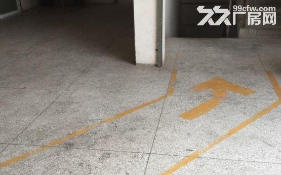 枋湖工业小区厂房出租2楼350平3楼1150平-图(3)