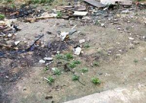阳西西湖公园周边靓地出售前30米大街收据地