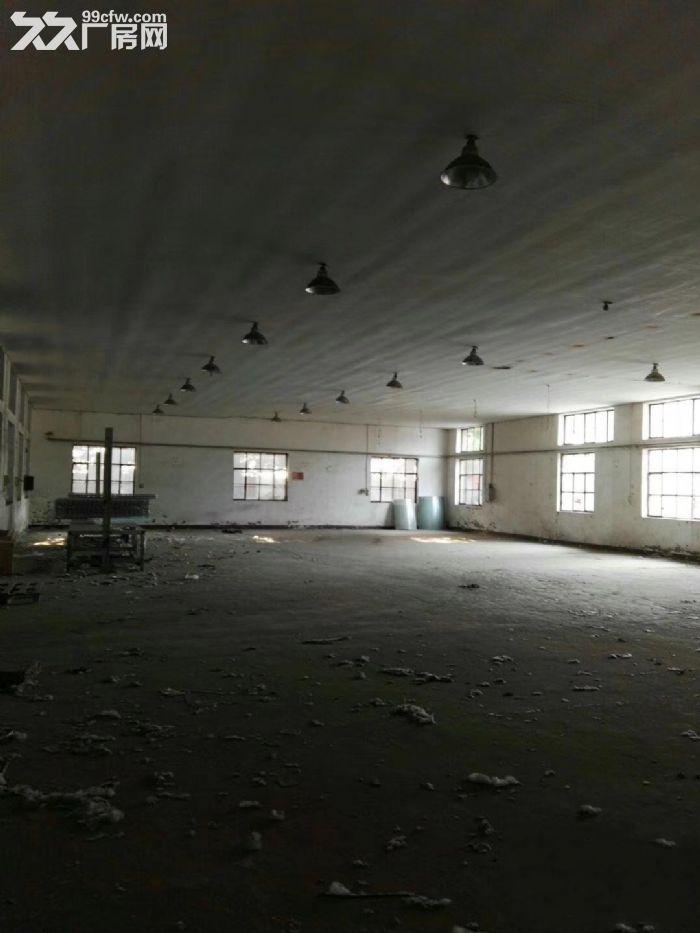 整院出租5000平,办公宿舍,仓储一体,占地30亩-图(6)