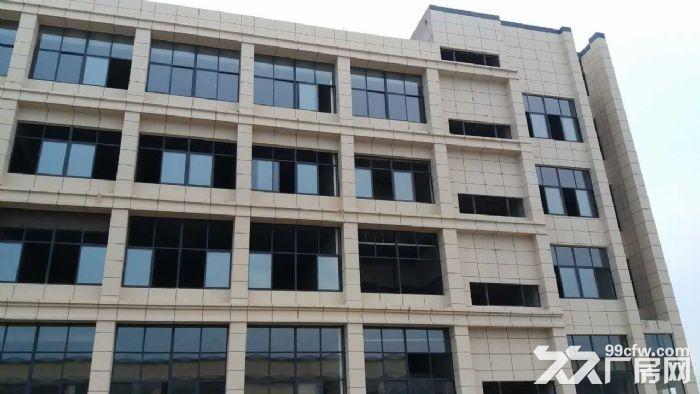 独立厂区办公区厂房招租-图(8)