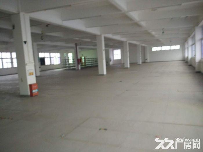 海沧区标准厂房90000平方出租(大小可以分租)-图(1)