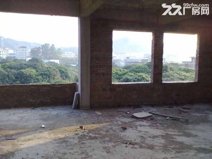 从化大广高速街口出口附近一栋三层800平方楼房转让-图(6)