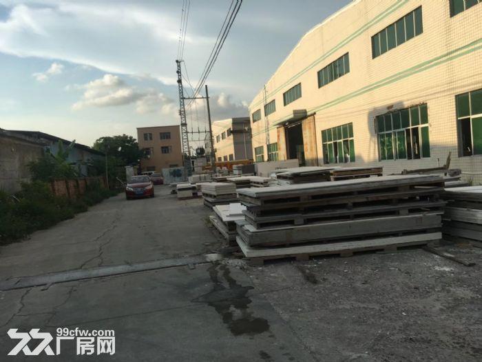 沥林高速路口单层钢构厂房3300平米出租-图(4)