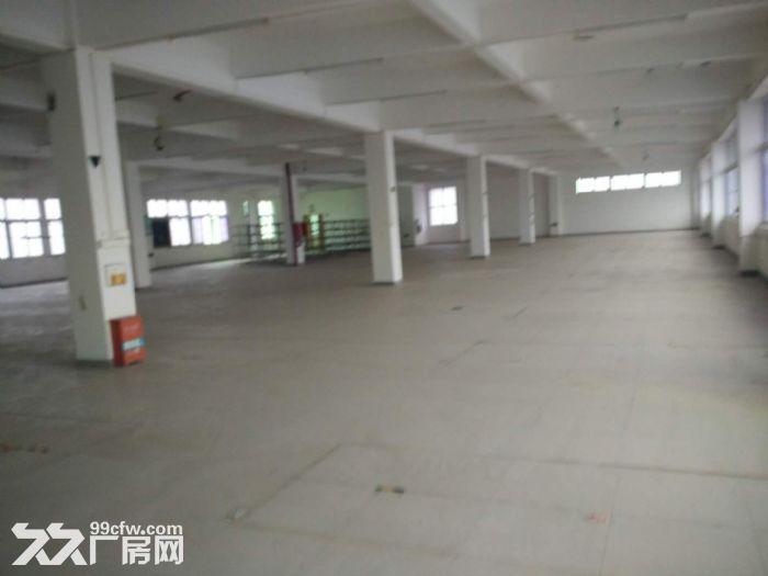 角美标准厂房20000平方出租-图(1)