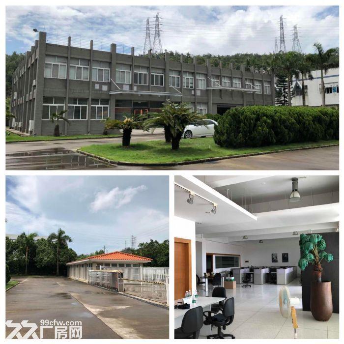 三灶镇5564平米花园式独院厂房带办公室低价招租(业主直租)-图(2)