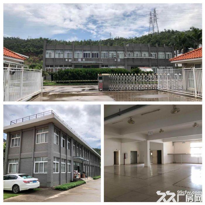 三灶镇5564平米花园式独院厂房带办公室低价招租(业主直租)-图(3)