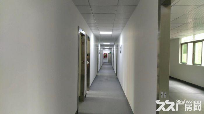 西丽地铁口6米大窗独立办公业主直租3500每月-图(1)