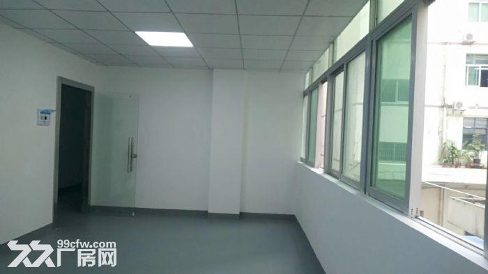 西丽地铁口6米大窗独立办公业主直租3500每月-图(2)