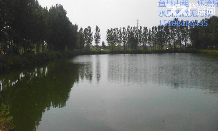 沈阳周边鱼塘出租交通方便地理好-图(4)