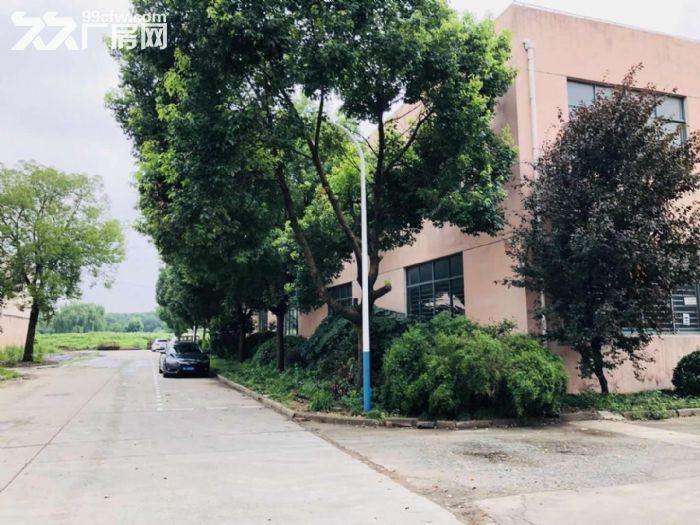 赵巷104地块绿证厂房6000平可分租丙二类消防交通便利环境干净-图(1)