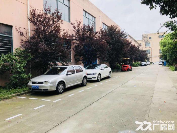 赵巷104地块绿证厂房6000平可分租丙二类消防交通便利环境干净-图(3)