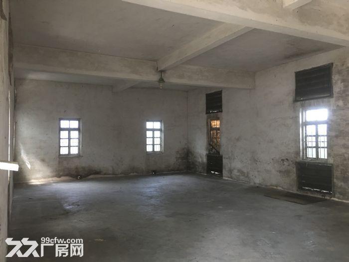 南沙大岗2000平方标准厂房出租,有化工营业执照-图(4)