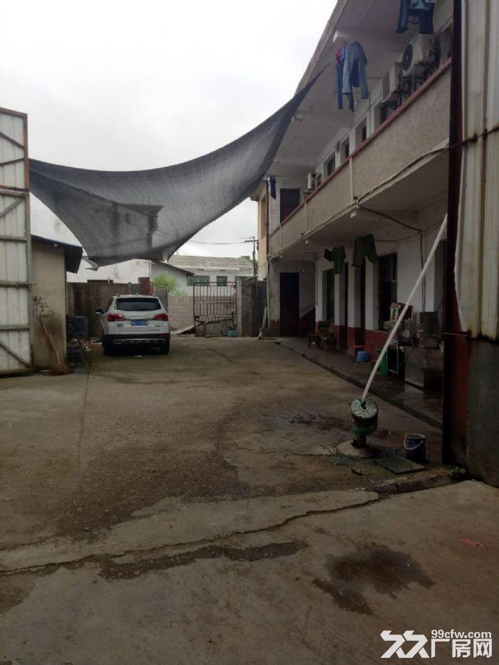 沙坪标准钢结构带行车厂房出租-图(4)