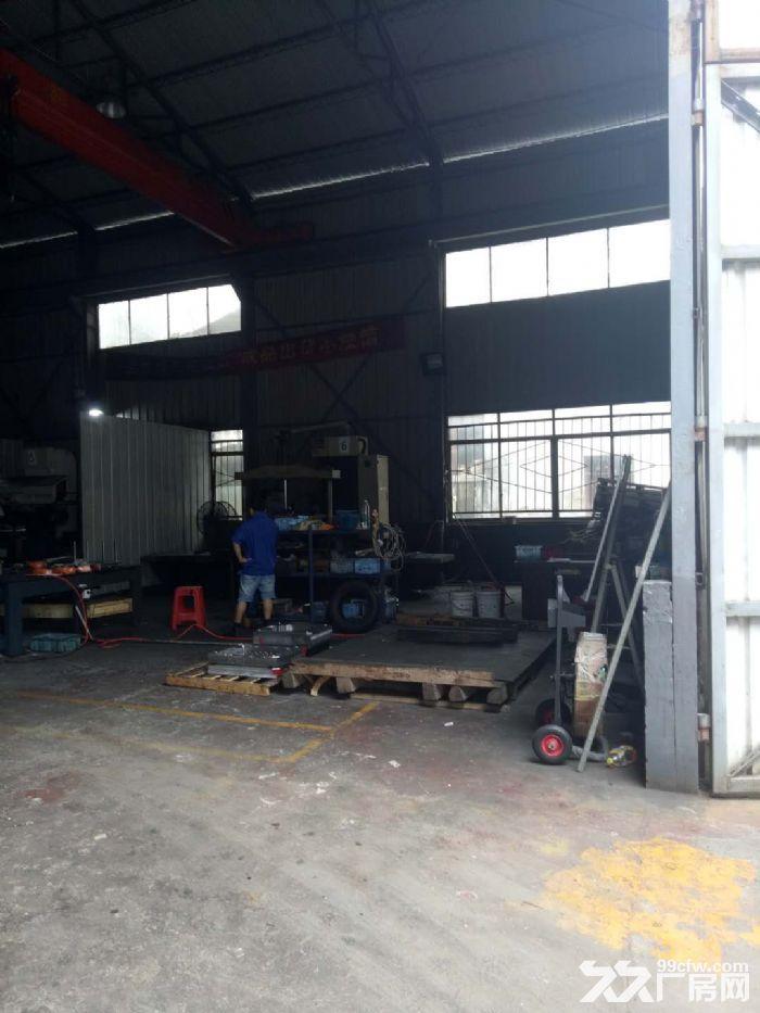 开福区独门独院标准钢结构厂房出租-图(5)