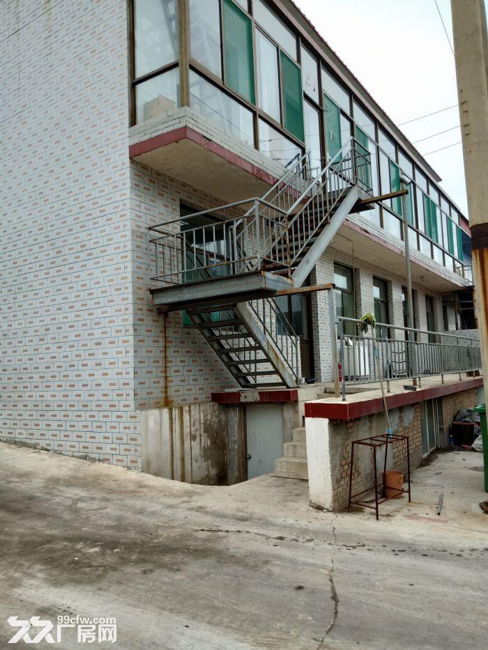 钢构厂房出租有意者联系-图(4)