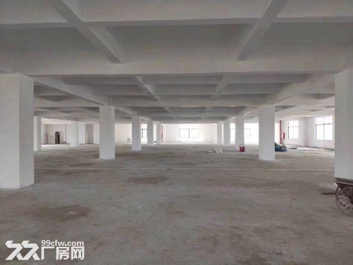 南沙大岗标准厂房出租独门独院全新形象好-图(2)