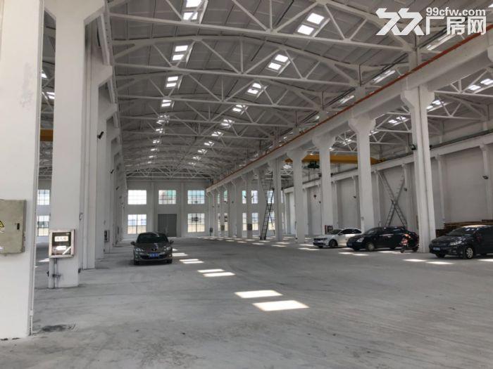 胡埭独门独院5200平米一房东出租-图(3)