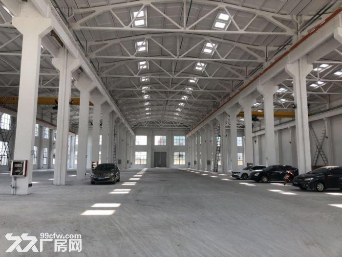 胡埭独门独院5200平米一房东出租-图(4)