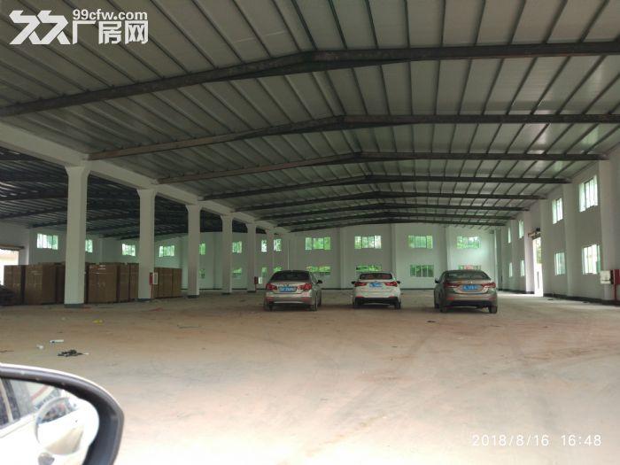 全新独院单层厂房15000平米出租-图(3)