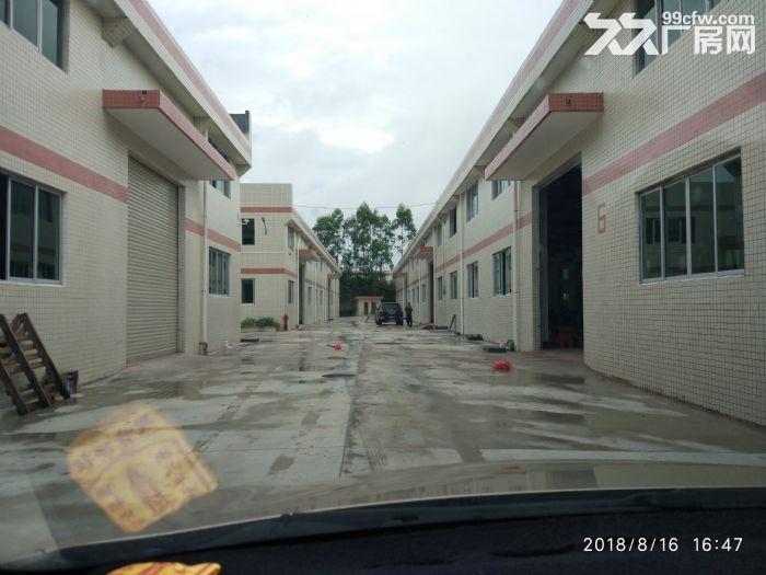 全新独院单层厂房15000平米出租-图(4)