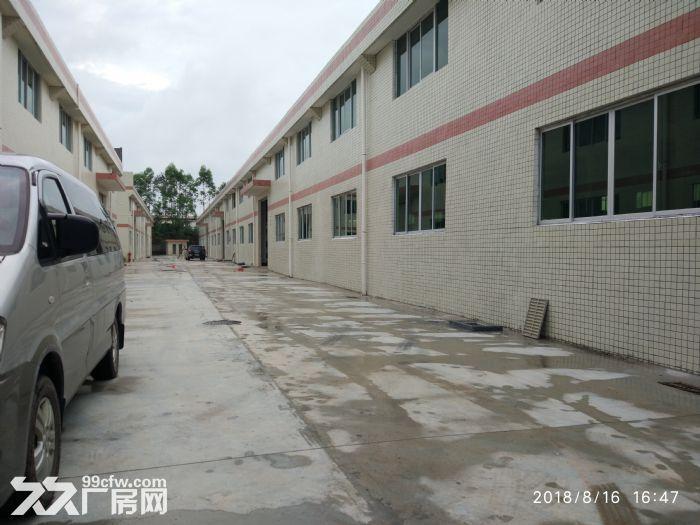 全新独院单层厂房15000平米出租-图(5)