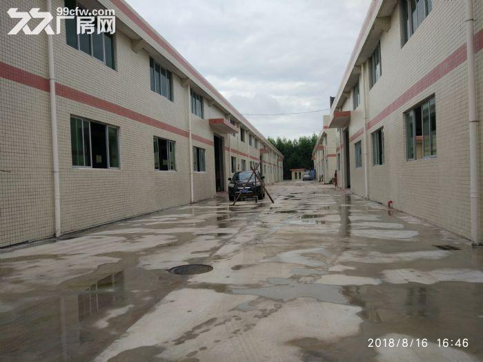 全新独院单层厂房15000平米出租-图(6)