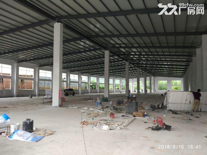 全新独院单层厂房15000平米出租-图(7)