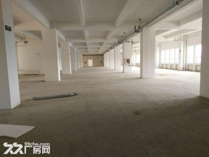 马驹桥厂房出租,可环评户型方正生产研发库房均可-图(2)