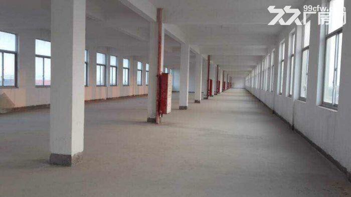 优质仓储、办公、厂房招租(租房可为其销售产品、有消防验收合格证)-图(6)