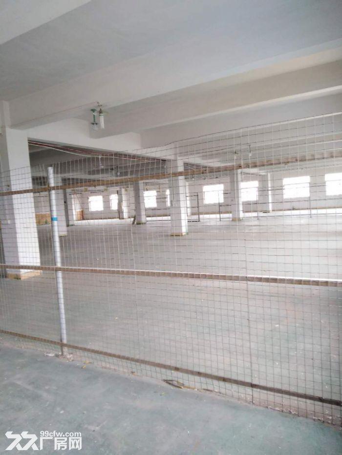 三沙有5400方厂房出租,2楼、4楼各2700方,有独立电梯,价格实惠-图(2)