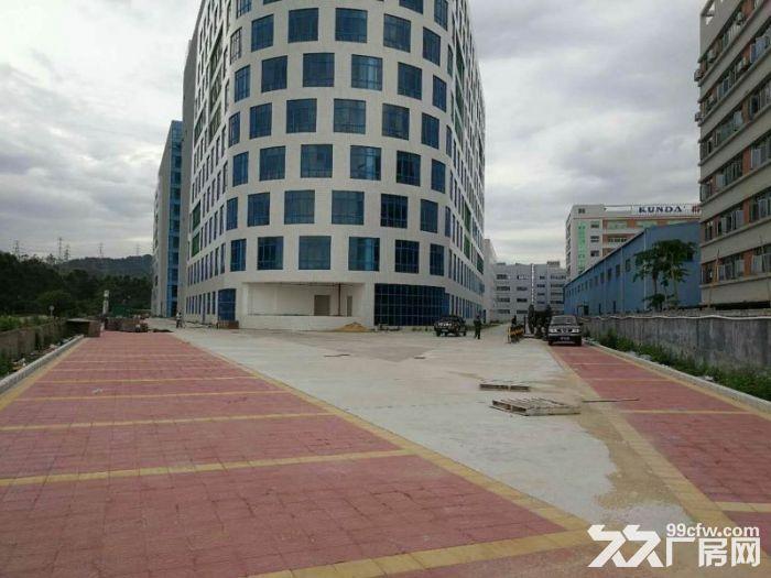宝龙工业城7万平米原房东红本独院厂房招租-图(1)