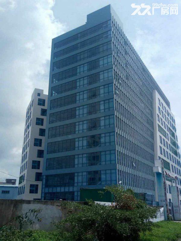 宝龙工业城7万平米原房东红本独院厂房招租-图(3)