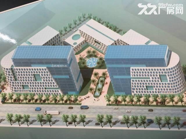 宝龙工业城7万平米原房东红本独院厂房招租-图(5)