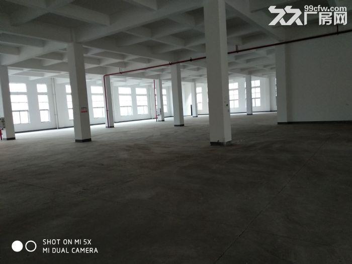 蔡家光电工谷4200方砖混结构厂房出租-图(1)