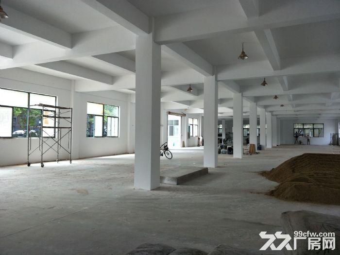 九新公路独立一楼小仓库一百平-图(7)