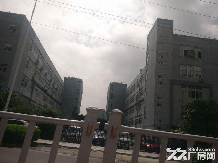 灌口标准厂房16500平方出租(可分租)-图(1)