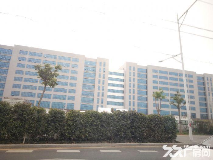 角美独门独院钢结构51000平方出租-图(1)