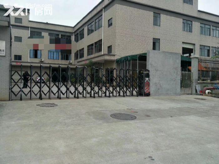 泰丰工业区800方楼上厂房出租无行业限制-图(2)