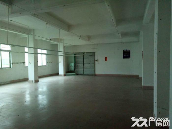 泰丰工业区800方楼上厂房出租无行业限制-图(1)