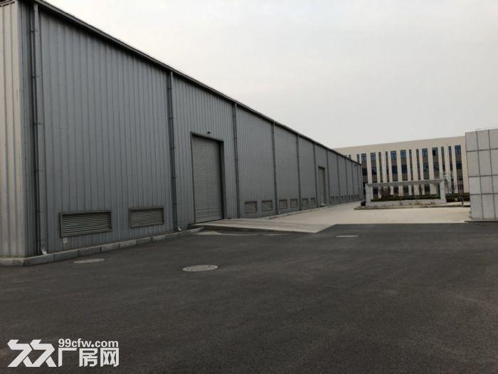 大连开发区6500平方新建标准厂房出租-图(5)